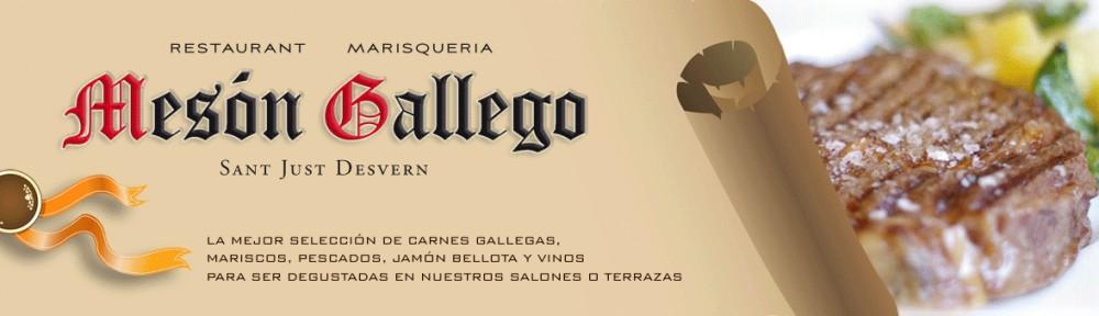 cropped-meson-gallego.jpg